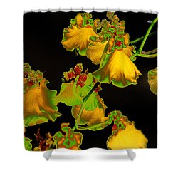 Shower Curtain featuring the photograph Beyond Beyond by Ira Shander
