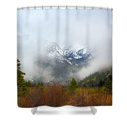 Beyond Shower Curtain