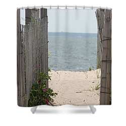 Beyond The Dunes Shower Curtain by Barbara Bardzik