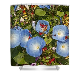 Bhubing Palace Gardens Morning Glory Dthcm0433 Shower Curtain
