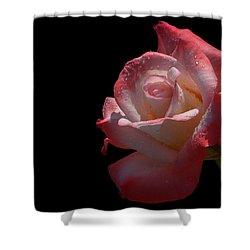 Shower Curtain featuring the photograph Bashful by Doug Norkum