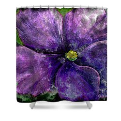 Big African Violet - Purple Flower - Steel Engraving Shower Curtain by Barbara Griffin