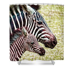 Shower Curtain featuring the photograph Big And Little by Jaki Miller