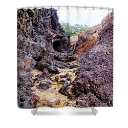 Big Beach 41 Shower Curtain