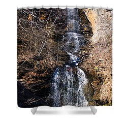 Big Bradley Falls 2 Shower Curtain