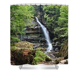 Big Bradley Falls Shower Curtain