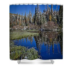 Big Cottonwood Canyon  Shower Curtain by Richard Cheski
