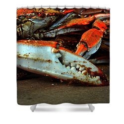 Big Crab Claw Shower Curtain
