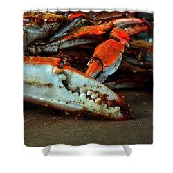 Big Crab Claw Shower Curtain