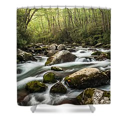 Shower Curtain featuring the photograph Big Creek by Debbie Green