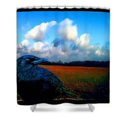 Big Daddy Crow Series Silent Watcher Shower Curtain by Lesa Fine
