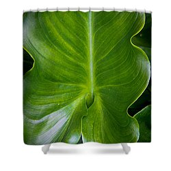 Big Green Shower Curtain by Aaron Berg