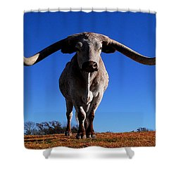 Big Moe Shower Curtain