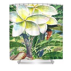 Big Pua 1 Shower Curtain