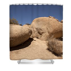 Big Rock Shower Curtain by Amanda Barcon