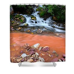 Big Spring Shower Curtain