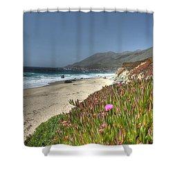 Big Sur Beach Shower Curtain by Jane Linders