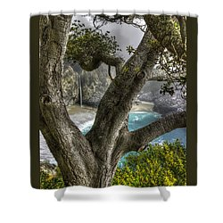 Big Sur Mc Way Falls At Julia Pfeiffer State Park-1 Central California Coast Spring Early Afternoon Shower Curtain by Michael Mazaika