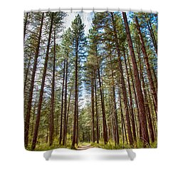 Big Valley Views Mvsta Trail Shower Curtain by Omaste Witkowski