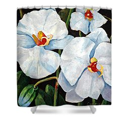 Big White Orchids - Floral Art By Betty Cummings Shower Curtain by Sharon Cummings