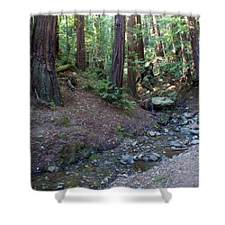 Bigfoot On Mt. Tamalpais Shower Curtain