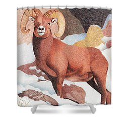 Bighorn Sheep Winter Shower Curtain