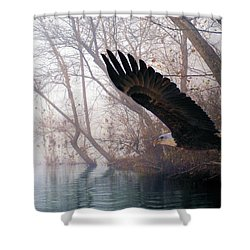 Bilbow's Eagle Shower Curtain