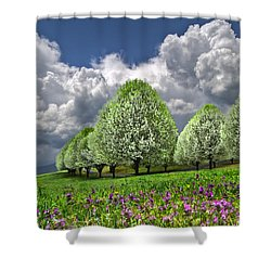 Billows Shower Curtain by Debra and Dave Vanderlaan
