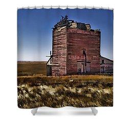 Shower Curtain featuring the painting Bingo Grain Co by Muhie Kanawati