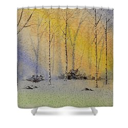 Birch In Blue Shower Curtain