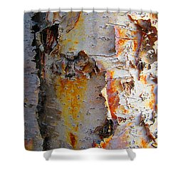 Birch Paper Shower Curtain