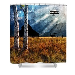Birch Trees And Biplanes  Shower Curtain by Bob Orsillo