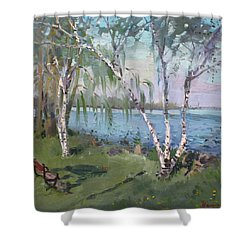 Birch Trees By The River Shower Curtain by Ylli Haruni