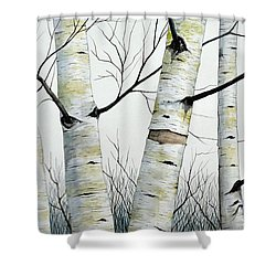 Birch Trees In The Forest By Christopher Shellhammer Shower Curtain