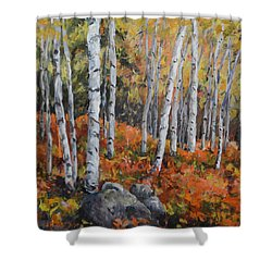 Birch Trees Shower Curtain by Alexandra Maria Ethlyn Cheshire