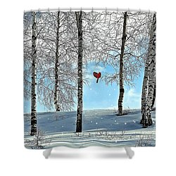 Birch Trees Shower Curtain by Liane Wright