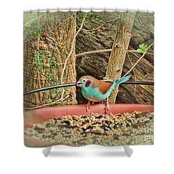Bird And Feeder Shower Curtain by Joan  Minchak