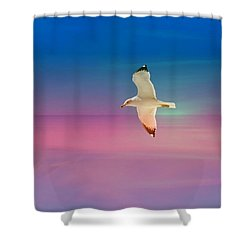Shower Curtain featuring the photograph Bird At Sunset by Athala Carole Bruckner