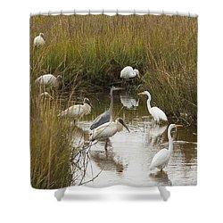 Bird Brunch Shower Curtain