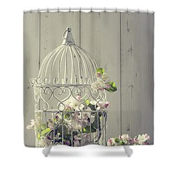 Bird Cage Shower Curtain by Amanda Elwell