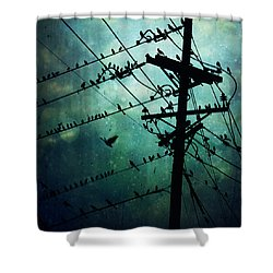 Bird City Shower Curtain by Trish Mistric