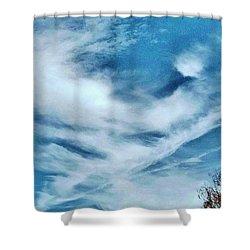 Bird Cloud Soaring By Shower Curtain