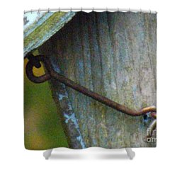 Shower Curtain featuring the photograph Bird Feeder Locked Memory by Brenda Brown