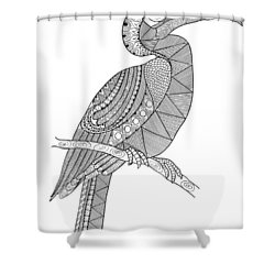 Bird Hornbill Shower Curtain