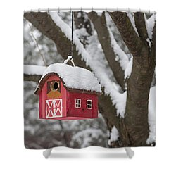 Bird House On Tree In Winter Shower Curtain