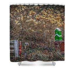 Bird House Shower Curtain by Ray Congrove