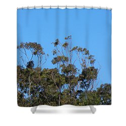 Shower Curtain featuring the photograph Bird In A Tree by Mark Blauhoefer