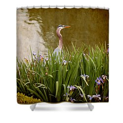 Shower Curtain featuring the photograph Bird In The Water by Milena Ilieva