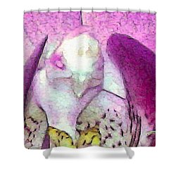 Shower Curtain featuring the photograph Bird Kind Of by David Coblitz