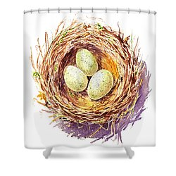 Bird Nest A Happy Trio Shower Curtain